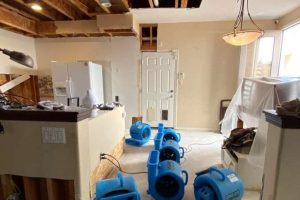 Water Removal Company