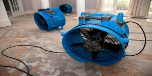 water restoration services